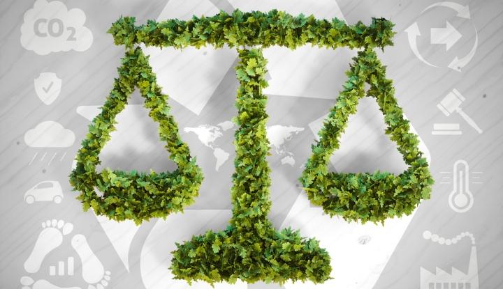 justiciaecologica2